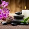 Beauty & Balance Logo