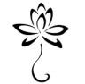 The Lotus Room Hair Design Studio