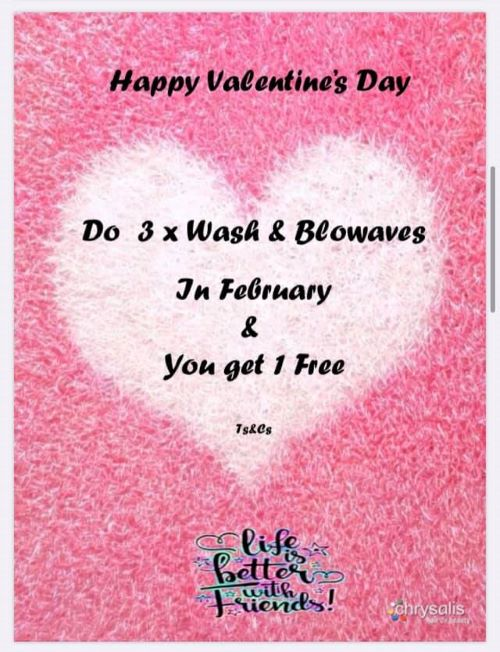 Get a Free Wash and Blowave when you purchase 3 during the month of February 2020